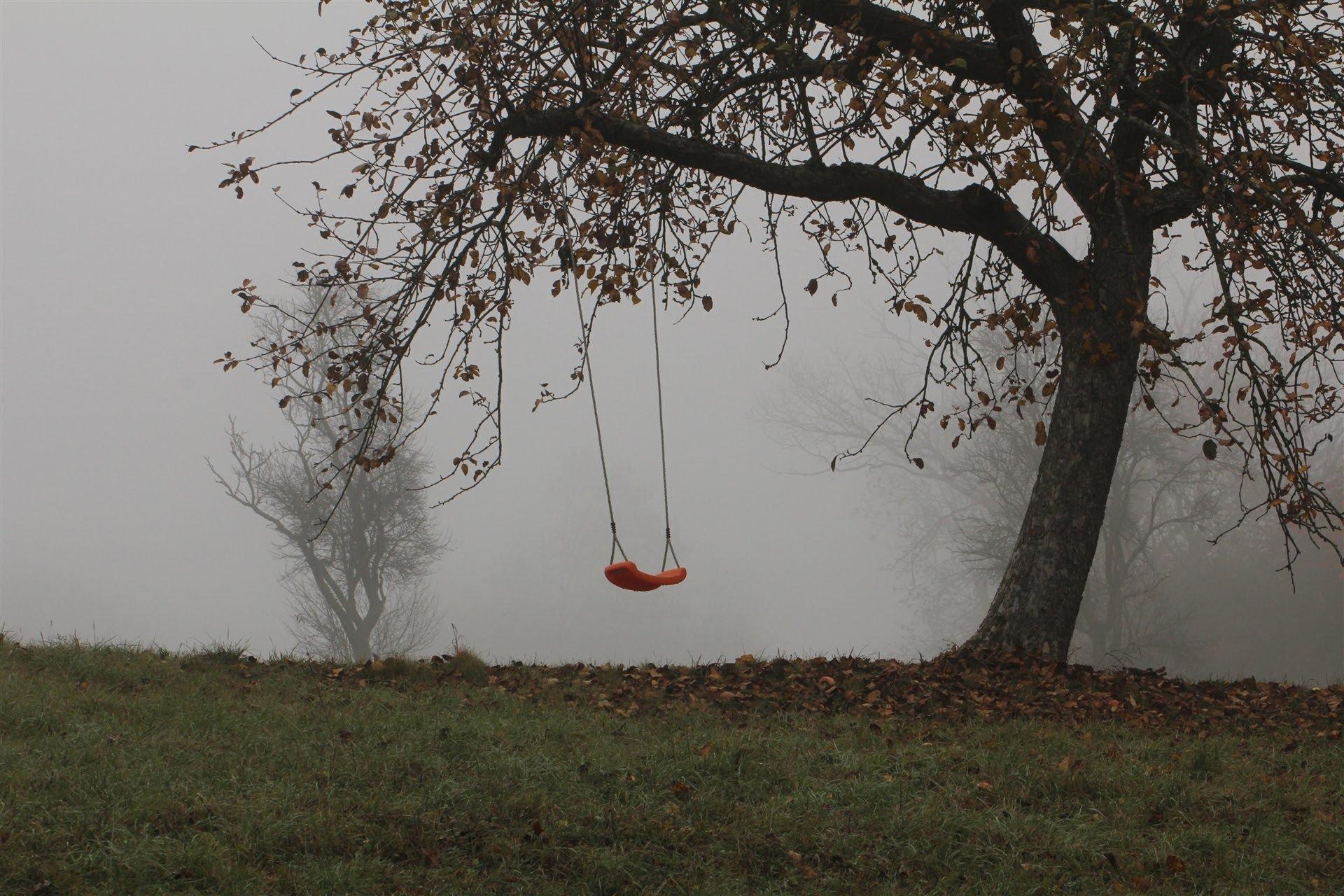 Giovane muore cadendo da altalena in un dirupo www for Altalena con ponte