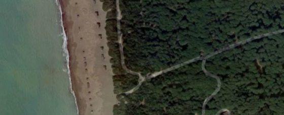 Castagneto C.cci: al via abbattimento 'baracche' abusive su spiaggia