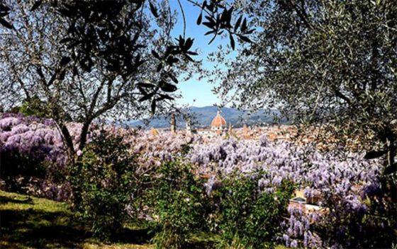 A Firenze riapre il Giardino dell'iris