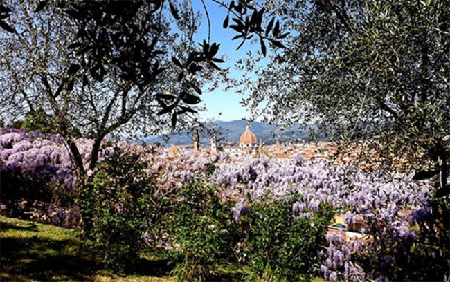 A firenze riapre il giardino delliris www.controradio.it