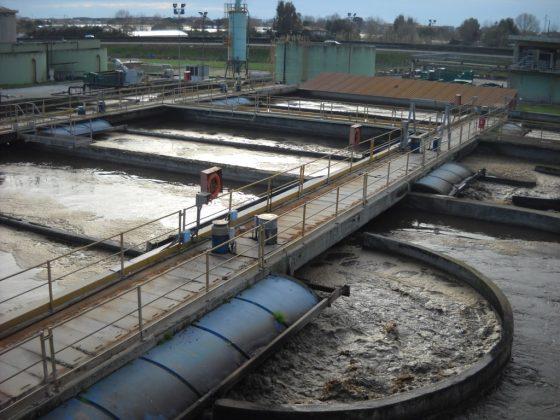 """Camaiore (Lucca), Arpat: """"Valori elevatissimi di Escherichia coli"""" in acque depuratore"""