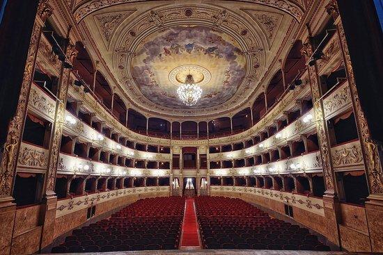 #PergolaOccupata: i progetti di alternanza scuola-lavoro in teatro