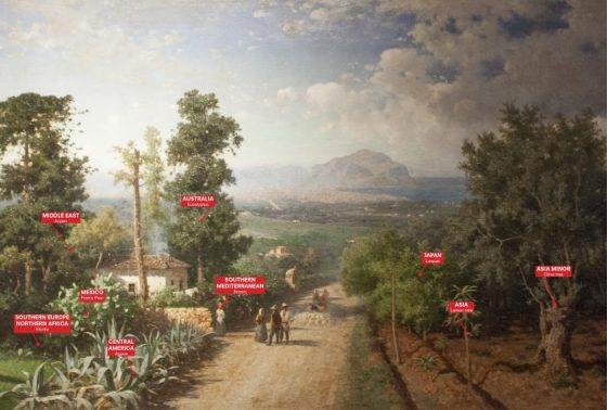 Manifesta a Palermo, 6° e ultima puntata