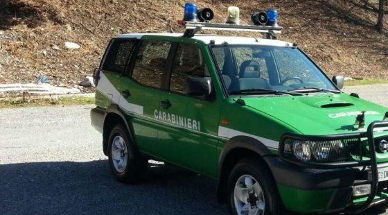 Sentieri antincendio, oltre 100 multe per auto in sosta nel pisano