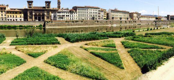 Firenze: labirinto verde in riva d'Arno diventa un'opera d'arte