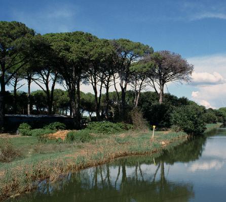 Al via Natura in Toscana: estate di iniziative in riserve e parchi