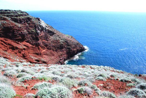 Isole covid free: Capraia, al via campagna vaccinale