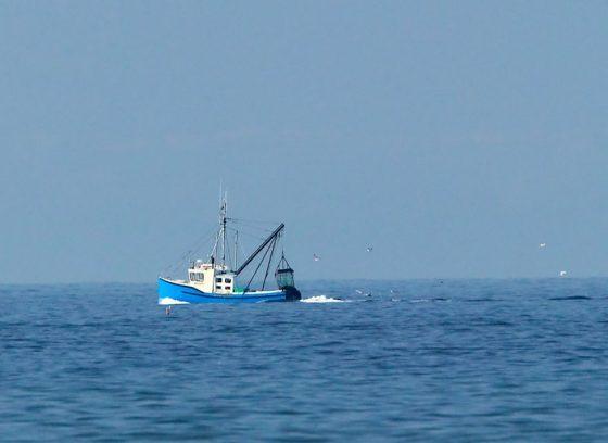 Toscana, pesca: aumentato livello limite prelievo trote