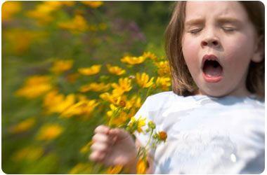 Allergie pollini: dottorando rivela meccanismi insorgenza