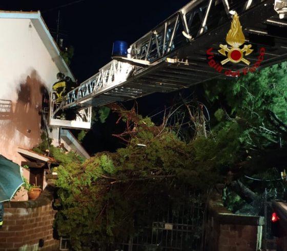 Maltempo: tromba d'aria a Rosignano, albero caduto su casa a Punta Ala