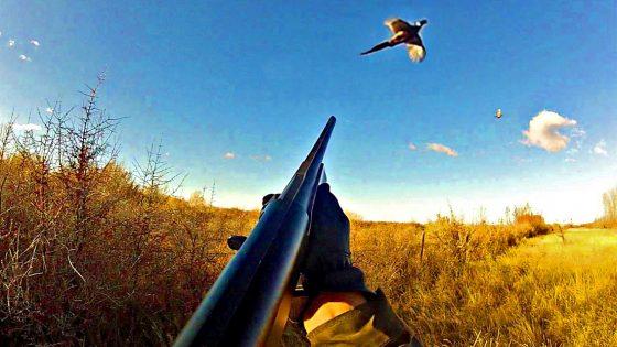 Lega: contrari a  stop caccia  il 14/1 in Toscana