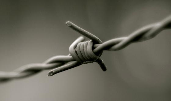 Museo Novecento celebra il Giorno della Memoria, ingressi gratuiti