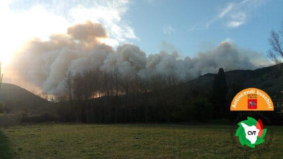Incendio Vicopisano, 150 ettari di pineta in fiamme