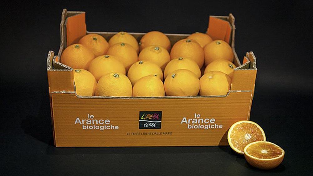Bagno a ripoli acquistati 1100 kg arance libera - Coop bagno a ripoli ...