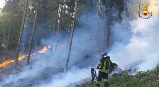 Incendio a Stazzema, bruciati 50 ettari di prati e pascolo