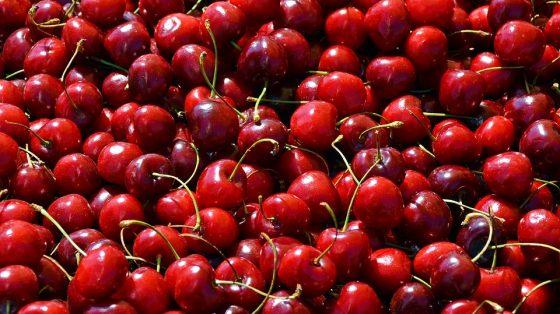 Maltempo: in Toscana distrutti 1.000 quintali di ciliegie