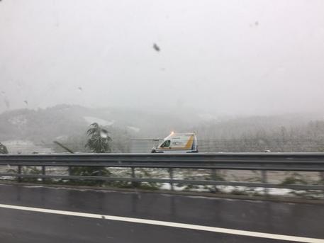 maltempo: tromba d'aria in VErsilia