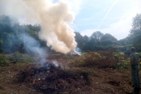 Incendi, in Toscana scatta divieto accensione fuochi