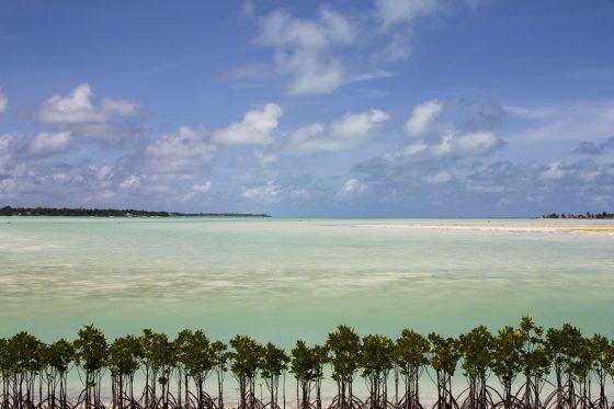 ImagOrbetello: torna il festival fotografico della Costa d'Argento