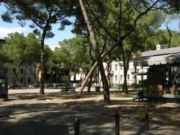 """Firenze, Del Re: """"68 nuovi pini saranno piantati in Piazza della Vittoria"""""""