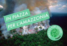 Friday For Future Amazzonia