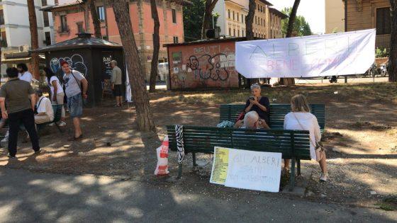 Piazza della Vittoria: cittadini si incatenano a pini, contro il taglio