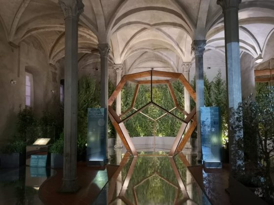 Leonardo da Vinci: la botanica del Genio in mostra a Firenze
