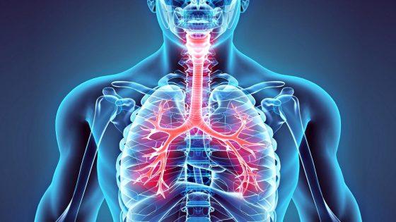 Cnr, in zone Pisa +152% mortalità per malattie respiratorie