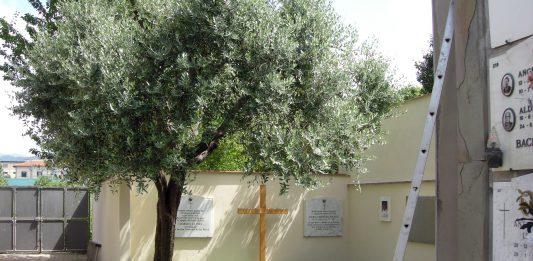 la tomba di Don Giulio Facibeni al cimitero di Rifredi