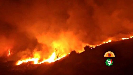 Nella notte incendio nei dintorni di Camaiore