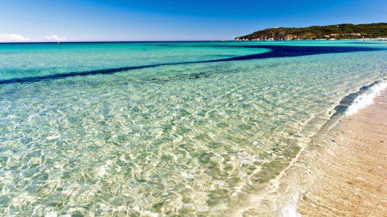 Ifremer: non c'è Coronavirus nelle acque del mare