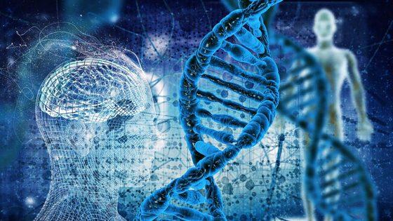 Unisi: forse popolazioni del sud geneticamente resistenti a Coronavirus