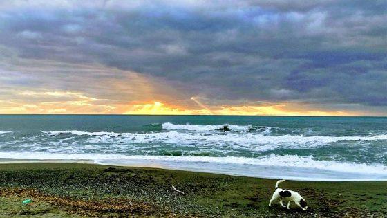 Turista tedesco 60enne annega in mare nel Livornese