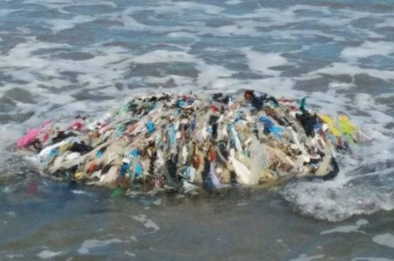 Ecoballe golfo Follonica, oggi al via le operazioni di recupero