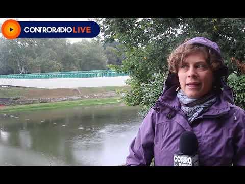 """Cnr, """"Durante il lockdown: meno 30% carbonio organico derivante dalle attività antropiche nell'Arno"""""""