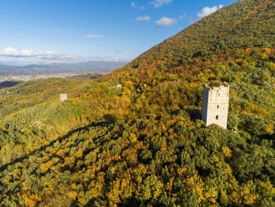 La Comunità del Bosco cerca proprietari e gestori di terreni per un progetto sul Monte Pisano