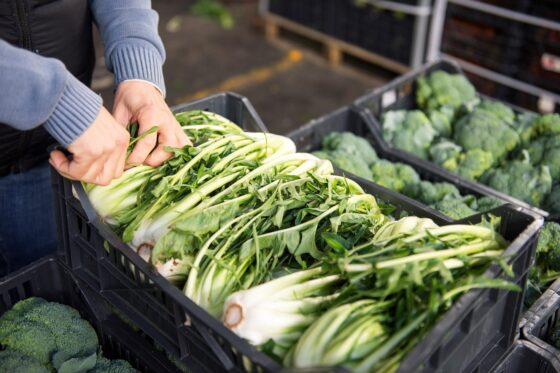 Covid: gruppi acquisto solidale chiedono di permettere mercati contadini