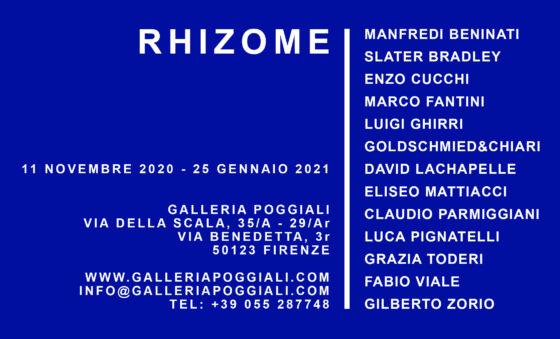 """Arte: la Galleria Poggiali di Firenze propone """"Rhizome"""", una selezione di opere"""