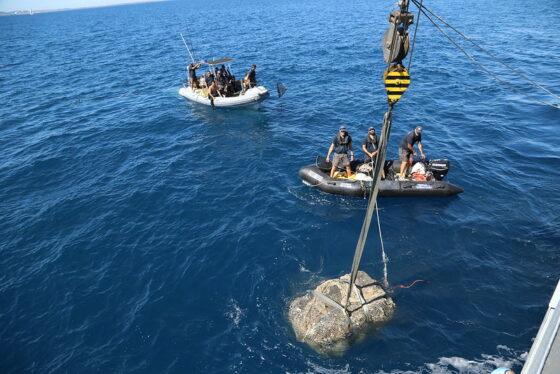 Ecoballe: 24 ancora disperse nel Santuario dei cetacei, in corso valutazioni