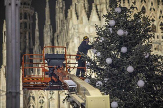 """""""Se volete bene alla natura comprate un albero di Natale vero"""""""