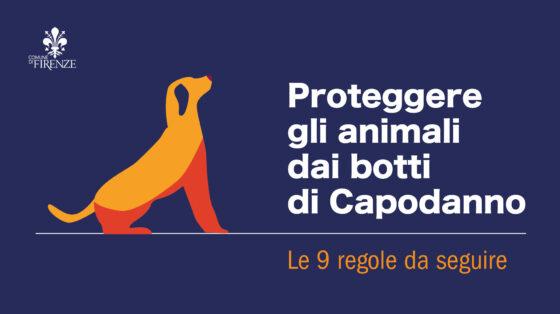 Proteggere gli animali dai botti di Capodanno, le nove buone pratiche da seguire