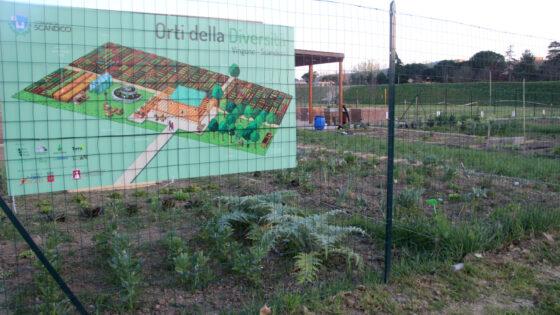 Scandicci: più spazi per gli orti urbani del Vingone