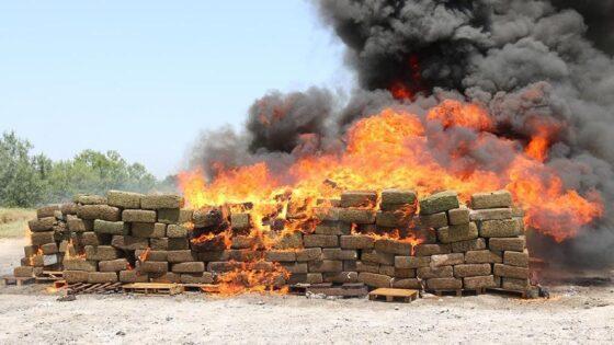 Cocaina, distrutti 3.300 kg, valore 500 mln di euro