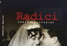 la copertina di Radici