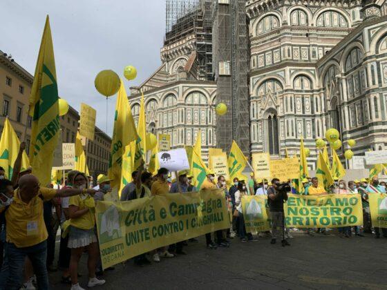 "Cinghiali, Coldiretti: ""basta estremismi, regione faccia sintesi"""
