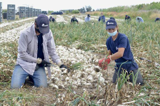 G20: Coldiretti, giovani contadini in piazza in difesa della terra
