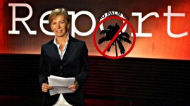 REPORT ATTACCA L'OLIO DI PALMA