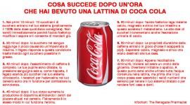 COSA SUCCEDE DOPO CHE BEVI UNA COCA