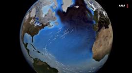 """""""ATLANTIC BLOB"""", CAUSA CAMBIAMENTI CLIMATICI"""