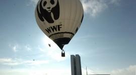 WWF ITALIA COMPIE 50 ANNI